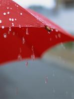 梅雨 雨イメージ