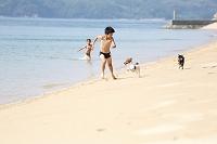砂浜で遊ぶ日本人の子供と子犬