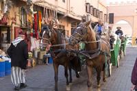 旧市街 観光馬車 マラケッシュ モロッコ