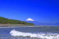 静岡県 三保の松原