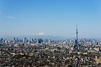 千葉県 東京スカイツリーと富士山