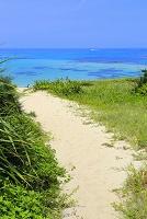 鹿児島県 奄美大島の土盛海岸