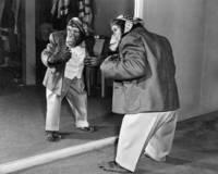 ジャケットを着るおしゃれなチンパンジー