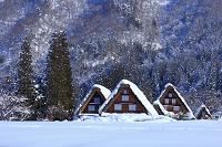 岐阜県 雪の白川郷