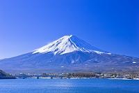 山梨県 早朝の富士山と河口湖 河口湖大橋