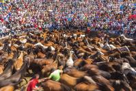 スペイン ガリチア 祭り