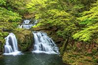 三重県 新緑の荷担滝 赤目四十八滝