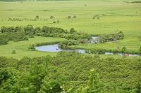 北海道 釧路 釧路川と湿原