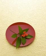 金紙と赤盆とセンリョウ