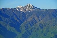山梨県 八ヶ岳(権現岳)から朝の北岳