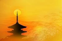 五重塔とススキと夕日