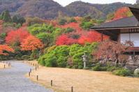 京都府 紅葉の大河内山荘