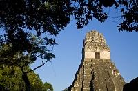 グアテマラ ティカル