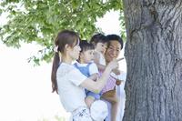 木の幹を見つめる日本人家族