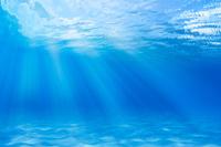 海底に差し込む光