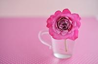 1輪のバラ