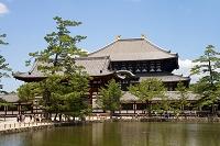 奈良県 東大寺 鏡池と中門と大仏殿