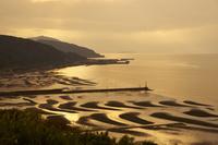 有明海の砂干潟