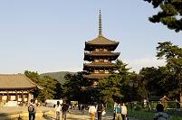 奈良県 奈良公園 興福寺五重塔