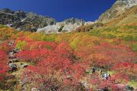 長野県 紅葉の涸沢と登山者と穂高連峰