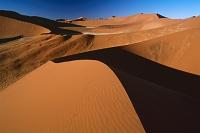 ナミビア ナミブ砂海 デューン45(公園入り口から45km地点にあ...