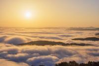 広島県 高谷山 霧の海展望台より雲海と山並みと朝日