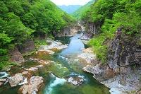 栃木県 日光市 初夏の竜王峡
