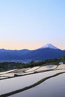 山梨県 夜明けの富士山と棚田