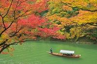 京都府 嵐山の屋形船
