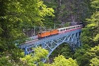 富山県 新緑の黒部峡谷鉄道 トロッコ列車と後曳橋