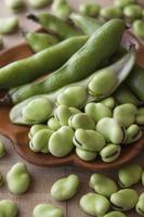 生鮮野菜 そら豆