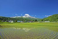 山形県 酒田市 残雪の鳥海山