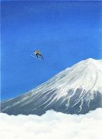 スキージャンプ スーパーラージヒル