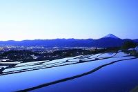山梨県 未明の富士山と棚田