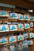 神奈川県 鎌倉市 明月院の絵馬