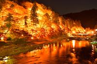 愛知県 豊田市 香嵐渓のライトアップ