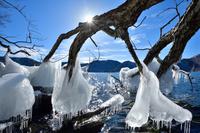 栃木県 日光市 中禅寺湖のしぶき氷