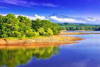 秋田県 大谷地池から望む夏の鳥海山