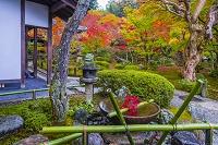 京都府 圓光寺