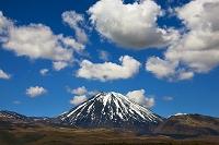 ニュージーランド 北島 ナウルホエ山