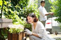 庭でガーデニングを楽しむアジア人