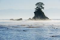 富山県 雨晴海岸より女岩と立山連峰の朝景