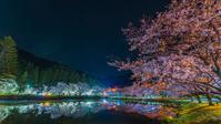 下北山スポーツ公園の夜桜と星空