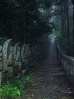 福島県 閼伽井嶽薬師