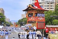 京都府 祇園祭 辻回しをする南観音山