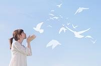 鳥を飛ばす日本人女性