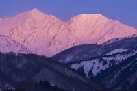 長野県 朝焼けの白馬鑓ヶ岳と杓子岳