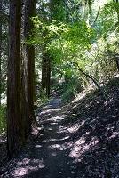 奈良県 葛城山のダイヤモンドトレール