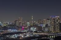 東京都 江東区 豊洲周辺のビル群と東京スカイツリー 夜景