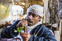 イエメン ザビード カートを食する男